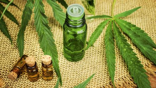 Cannabis/Marihuana
