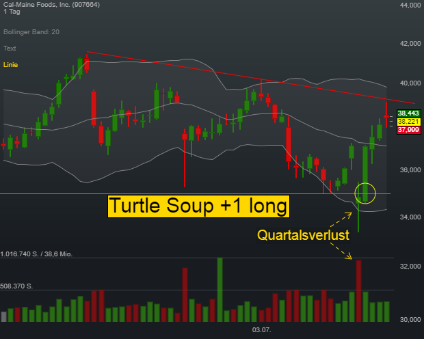Swing-Trading-Strategie Turtle Soup +1 long: Die Falle für Trendfolger!